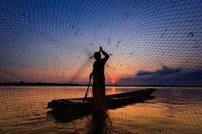 6 Pertanda Mimpi Melihat Ikan Mati di Sungai